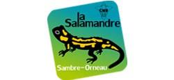Balade printanière le long du Ravel avec la Salamandre